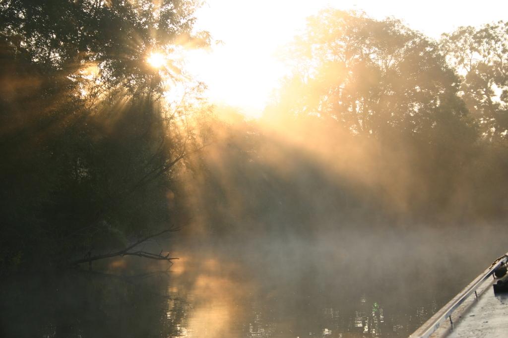 Sunshine and mist